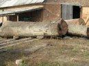 Ukraina.Kompleksy lesne,hale z trakiem i maszynami stolarskimi na sprzedaz,wynajem