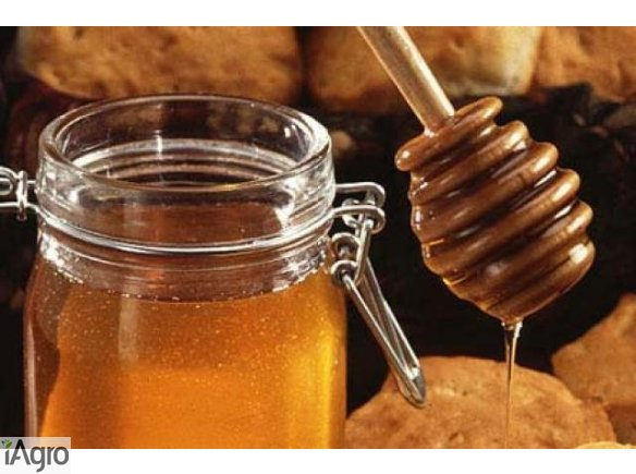 Ukraina.Gospodarstwa pszczelarskie i pasieczne.Miod,ule,propolis,wosk,mleczko pszczeli