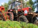 Ukraina.Kompleksy gospodarcze w obszarach rolnych i lesnych.Na sprzedaz,wynajem