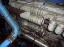 Kombajn zbozowy Bizon Z110  - zdjęcie 3