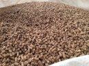 Sprzedam pellet drzewny, brykiet RUF i Pini&Key