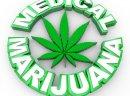 Lecznicze odmiany Konopi - Konopie stosowane w lecznictwie, nasiona konopi, nasiona marihuany