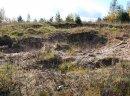 Mazury- 28złm- Stare Juchy grunty nad jeziorem przy lesie z warunkami zabudowy