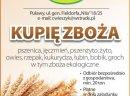 Skup zboża pszenica pszenżyto owies jeczmień żyto groch bobik tel.504082106