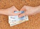 Kupie zyto  pszenice i kukurydze