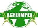 Agroimpex kupi zboża! Zapraszam do współpracy!