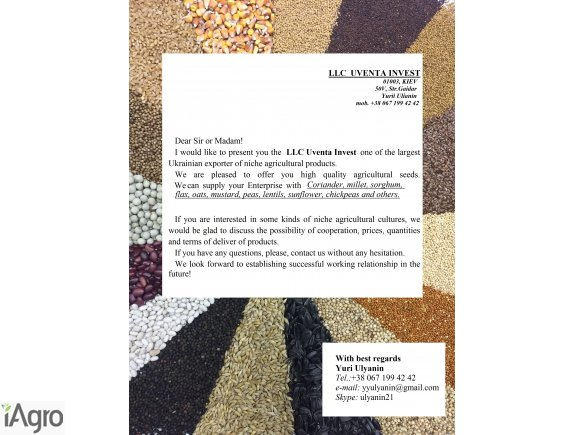 Coriander, millet, sorghum, flax, oats, peas, mustard, durum wheat, lentils, sunflower, chickpeas etc.