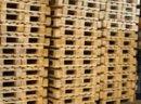 Ukraina.Linia do zbijania europalet.Sprzedajemy tartaki,hale produkcyjne,maszyny,urzadzenie,deski,elementy,drewno w zaglebie paleciarskim Lasow Panstwowych.Nieograniczone ilosci surowca znacznie obniza koszty wyprodukowania palet standart EURO. Czernihow