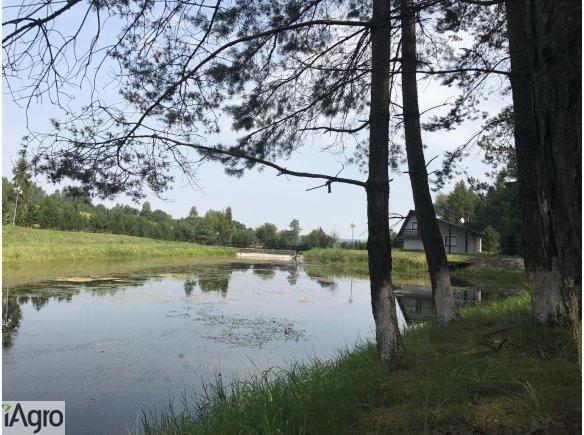 Gospodarstwo rybne Młynka gm. Zabierzów 15,95 ha