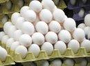Ukraina. Jaja kurze dietyczne od 1,7zl opakowanie 10szt. Swieze najwyzszej klasy od kur karmionych pasza wlasnej produkcji z chowu sciolkowego, klatkowego, wolnego wybiegu. Biale i brazowe rozmiarow S,M,L,XL o wadze 35~75 gram, przepiorcze 12g hodowli ek