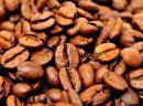 Kakaowca
