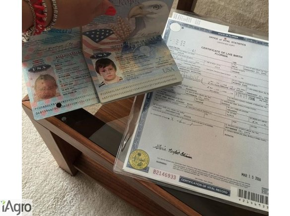 WhatsApp +19293677910 Applying for a New License (Drivers 18+) and US Birth certificate https://citizenshipforsale.net