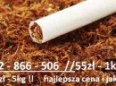 Wyprzedaż Hurtowni / Tytoń wysokiej jakości / 50zł/kg / 532866506