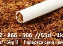 Promocja / Najwyższej jakości tytoń / Szybka dostawa / zapraszamy