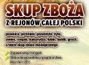 Kupie jęczmień - skup jęczmienia woj. opolskie