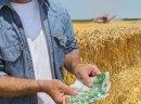 Pożyczki  hipoteczne pod  Grunty Rolne bez bik