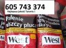 Tani dobry Tyton , Tytoń bez śmieci , Tyton do gilz , Tyton papierosowy , Tyton Korsarz , Tyton Ondraszek , Tyton Route66